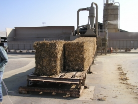 4x3x8 Corn Stover Bales on Bale Feed Conveyor feeding into G272-26-300 Grinder