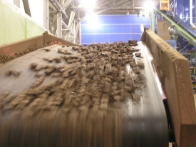 Conveyor with Biomass Wood Cubes